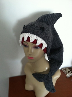 Shark Hat Picture